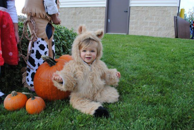 Young Child in Animal Costume Near Pumpkin